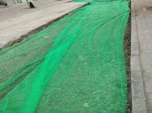 <b>绿色3针防尘网</b>